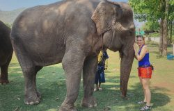 Elephants World – Tajlandia